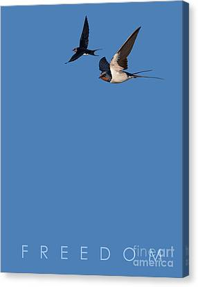 Canvas Print featuring the drawing Blue Series 002 Freedom by Rob Snow
