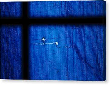 Blue Shade Canvas Print by Christi Kraft