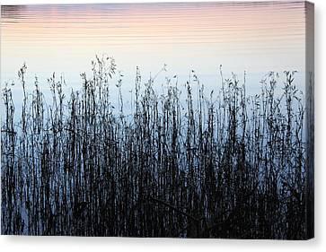 Canvas Print - Blue Shadow  by AR Annahita