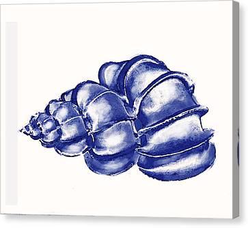 Blue Shell Canvas Print by Jane Schnetlage