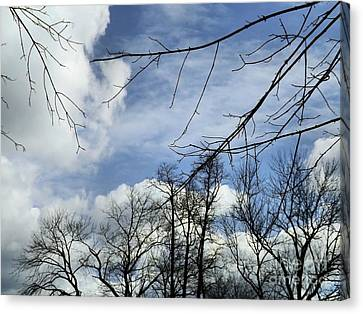 Canvas Print featuring the photograph Blue Skies Of Winter by Robyn King