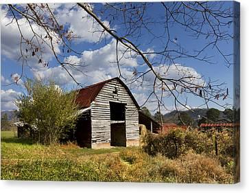 Blue Skies Red Roof Canvas Print by Debra and Dave Vanderlaan
