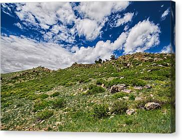 Blue Skies Canvas Print by Tony Boyajian