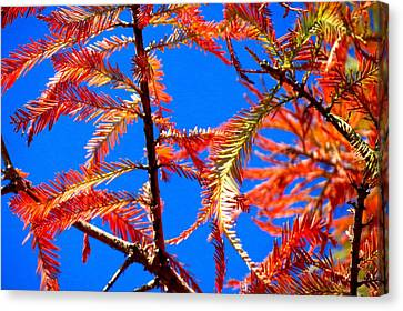 Canvas Print featuring the photograph Blue Sky Sunday by David  Norman