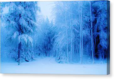 Blue Snowy Night Canvas Print