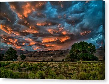 Blue Sunset Canvas Print by Cat Connor