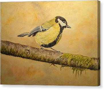 Blue Tit Canvas Print by Juan  Bosco