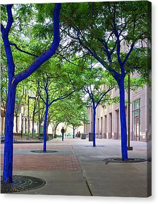 Blue Tree Walkway Canvas Print by Mary Lee Dereske