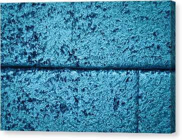 Blue Velvet Canvas Print by Tom Gowanlock