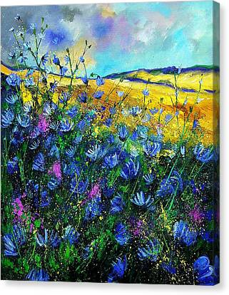 Blue Wild Chicorees Canvas Print by Pol Ledent
