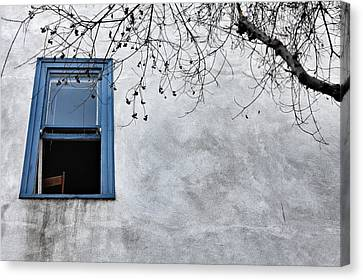 Blue Window Canvas Print by Diana Shay Diehl