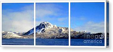 Blue Winter Triptych Canvas Print by Barbara Griffin