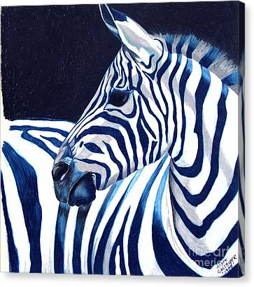 Blue Zebra Canvas Print by Alison Caltrider
