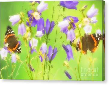 Bluebells And Butterflies Canvas Print