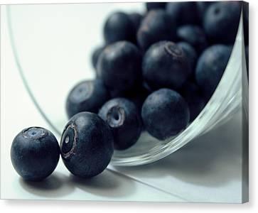 Blueberries Canvas Print by Joseph Skompski