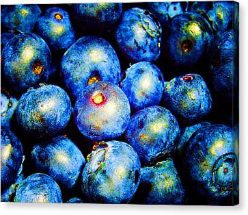 Blueberries Canvas Print by Laurie Tsemak