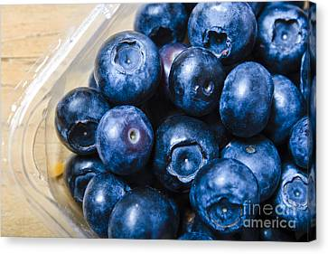 Blueberries Punnet Canvas Print by Jorgo Photography - Wall Art Gallery