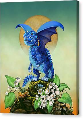 Blueberry Dragon Canvas Print by Stanley Morrison