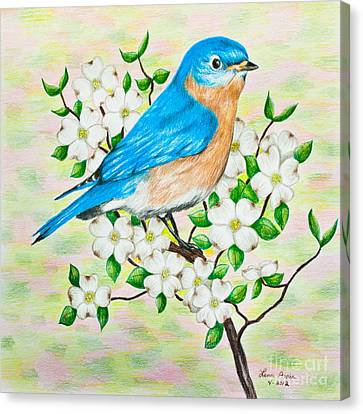Bluebird And Dogwood Canvas Print by Lena Auxier