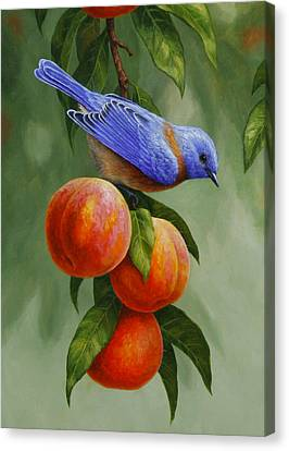 Peach Canvas Print - Bluebird And Peaches Greeting Card 1 by Crista Forest