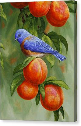 Peach Canvas Print - Bluebird And Peaches Greeting Card 2 by Crista Forest
