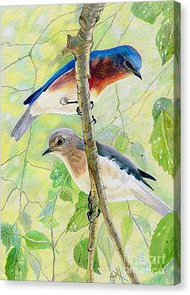 Bluebird Pair Canvas Print by Marilyn Smith