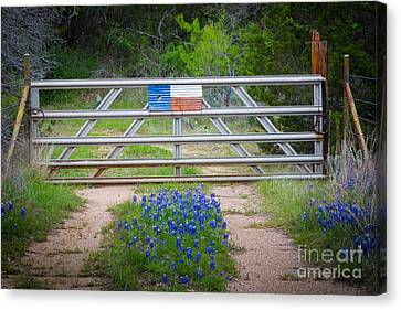 Bluebonnet Gate Canvas Print by Inge Johnsson