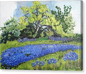 Bluebonnets On A Stormy Day Canvas Print