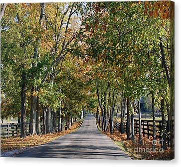 Bluegrass Fall Canvas Print by Roger Potts