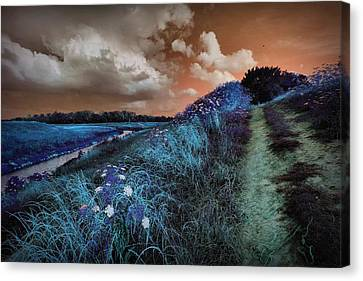 Bluegrass Canvas Print by Linda Unger
