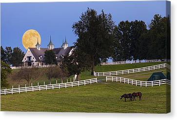 Bluegrass Moonrise Canvas Print