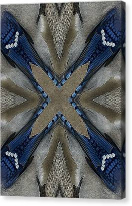 Bluejay Feathers Canvas Print