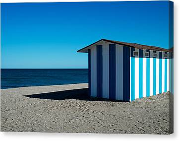 Bluesome Canvas Print