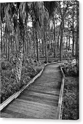 Boardwalk In Black And White 2 Canvas Print