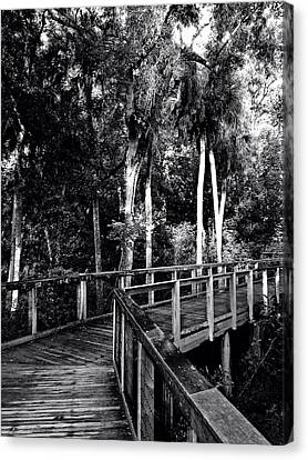 Boardwalk In Black And White Canvas Print by K Simmons Luna