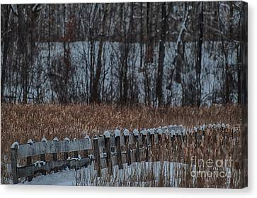 Canvas Print featuring the photograph Boardwalk Series No2 by Bianca Nadeau
