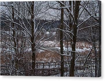 Canvas Print featuring the photograph Boardwalk Series No3 by Bianca Nadeau