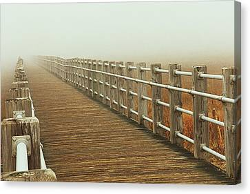Boardwalk To The Unknown Canvas Print by Karol Livote