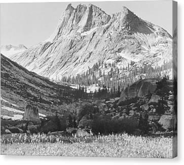 Boaring River Kings River Canyon Canvas Print by Ansel Adams