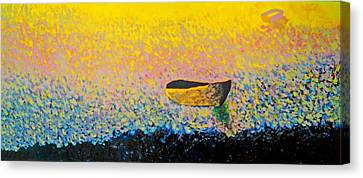 Boat Canvas Print by Andrew Petras