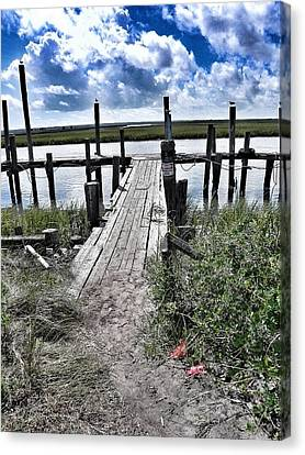 Boat Dock With Gulls Canvas Print by Patricia Greer