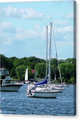 Sail Boats Canvas Print - Boat - Harbor At Bristol Ri by Susan Savad