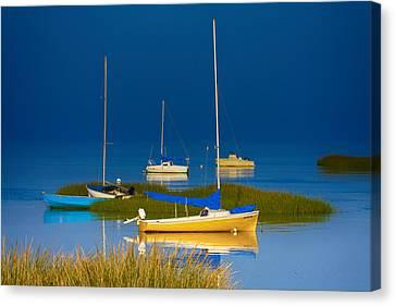 Boat Meadow Canvas Print by Dapixara Artwork