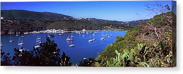 Boats At A Harbor, Porto Azzurro Canvas Print by Panoramic Images