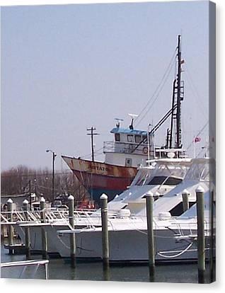 Boats Docked Canvas Print by Pharris Art