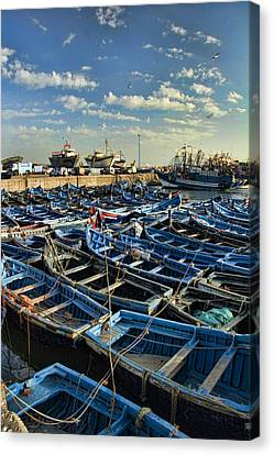 Boats In Essaouira Morocco Harbor Canvas Print by David Smith