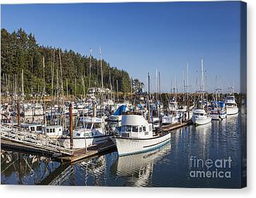 Boats Moored At Charleston Marina Canvas Print