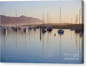 Boats Mooring Canvas Print