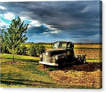 Bob's Old Chevy Truck In The Spring Canvas Print by Julie Dant