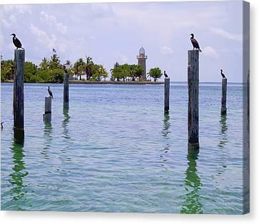 Boca Chita Docks Canvas Print by Carey Chen